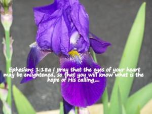 Ephesians 1_18a