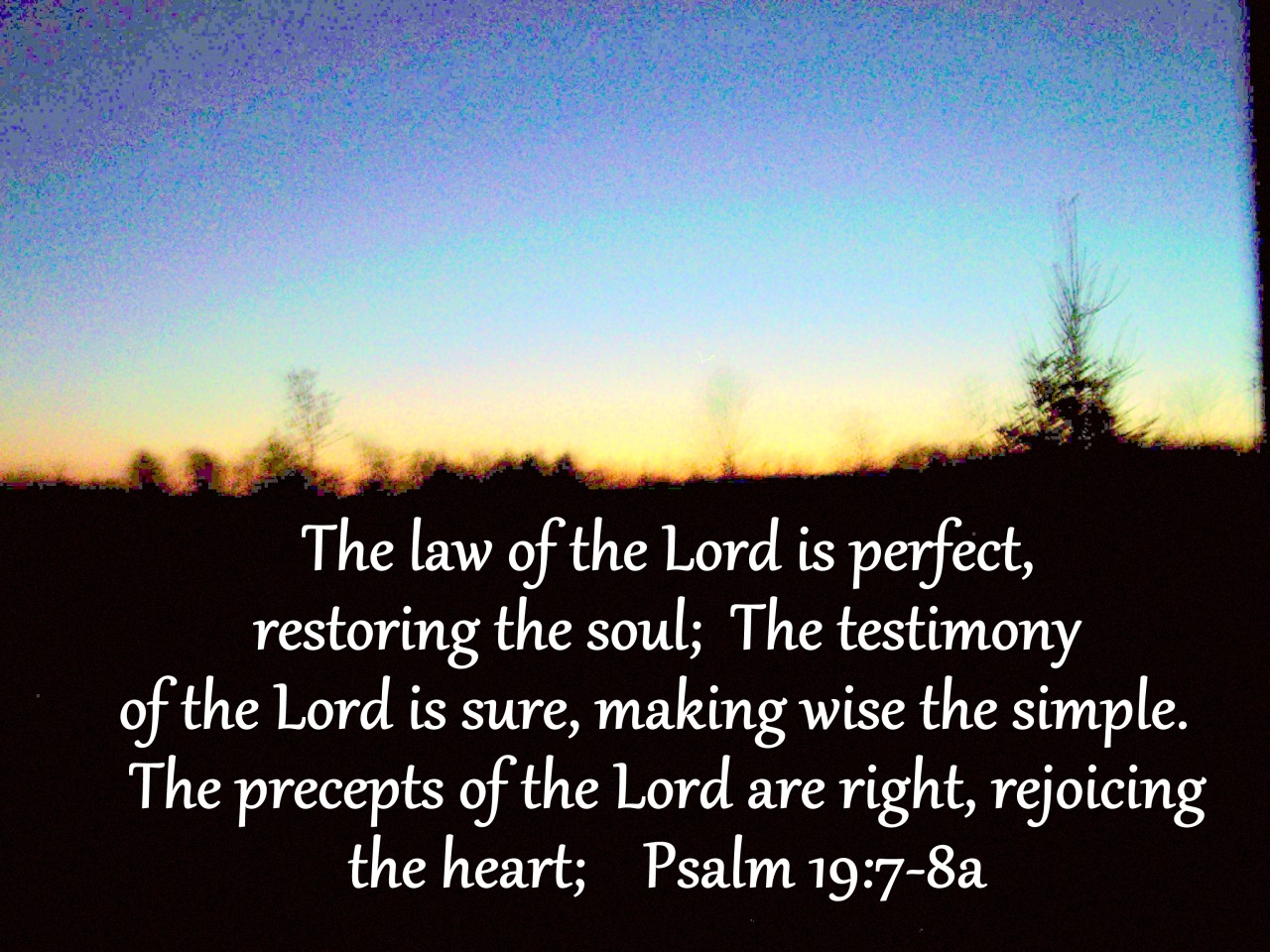 Image result for Psalm 19 8
