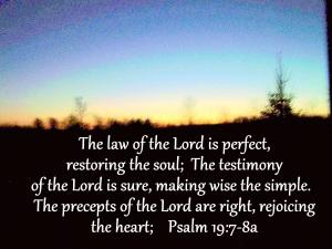 Psalm 19_7-8a