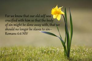 Romans 6;6