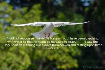 John 1;31-32.jpg